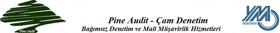 Pine Audit